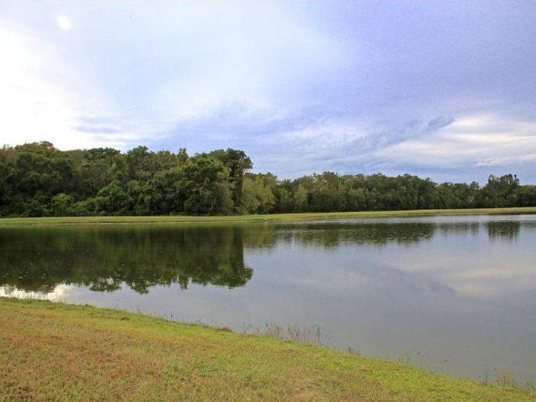 vue du jardin sur le lac