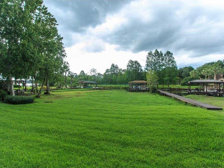 vue sur la nature depuis une résidence de villas
