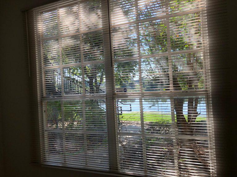 vue depuis l'appartement donnant sur un lac