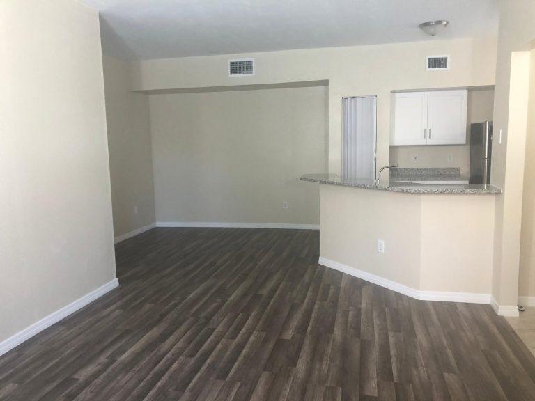 salon et cuisine avec parquet au sol