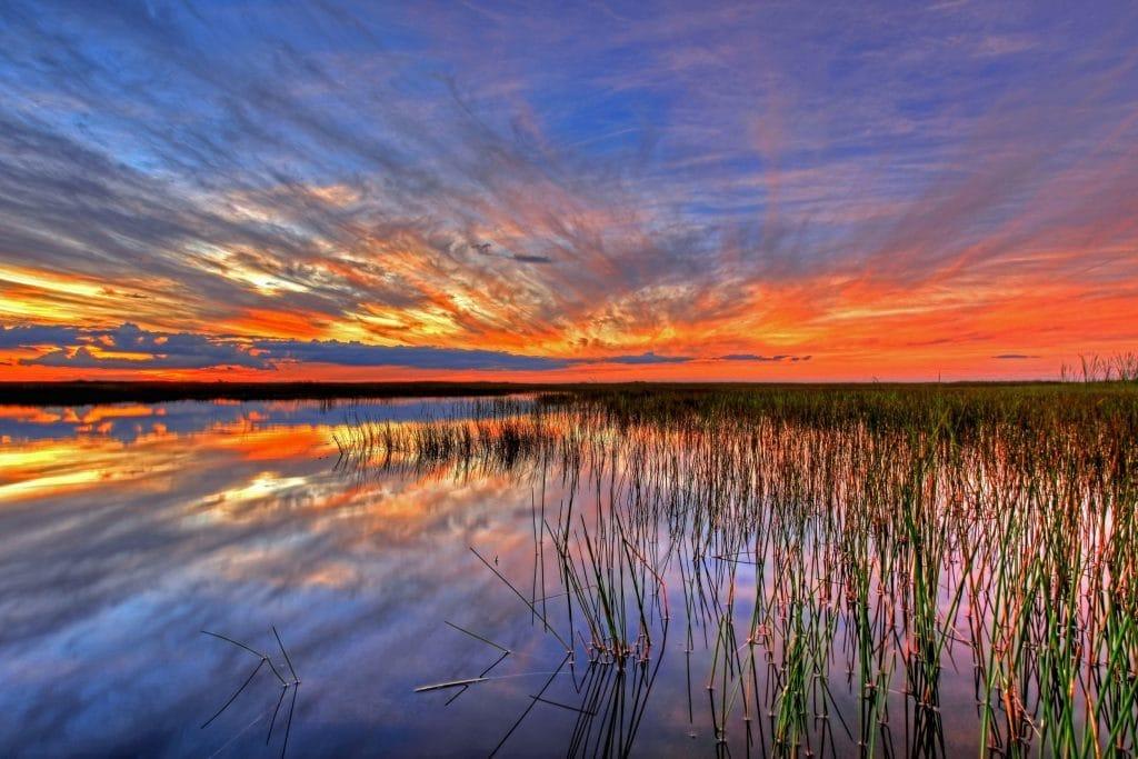 paysage des marecages des everglades au soleil couchant