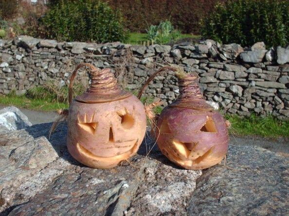 Navets gravés pour Halloween selon la culture Irlandaise